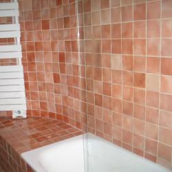 La baignoire-douche de la salle de bain